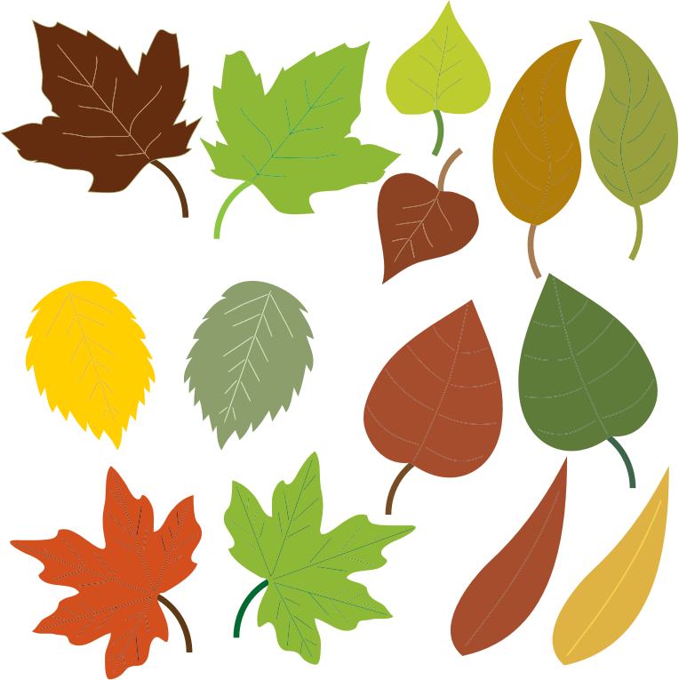 764x765 Leaves Clip Art Amp Look At Leaves Clip Art Clip Art Images