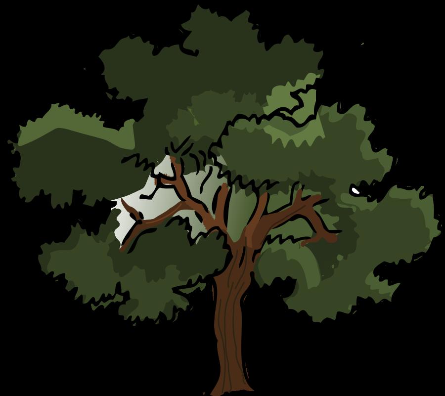900x801 Top 83 Tree Clip Art