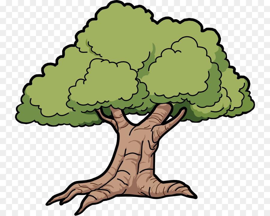 900x720 Tree Cartoon Drawing Clip Art