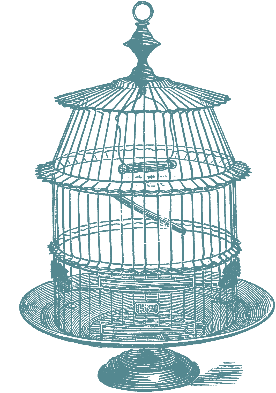 1067x1521 Another Set Of Bird Cage Stock Images Oh So Nifty Vintage Graphics
