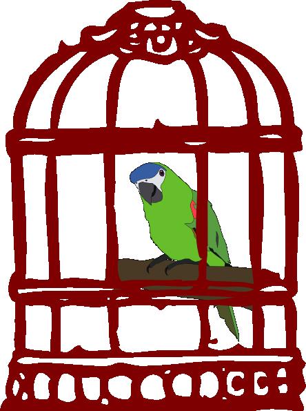 444x595 Parrot In A Bird Cage Clip Art