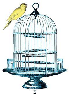 236x325 Steampunk Bird Cages