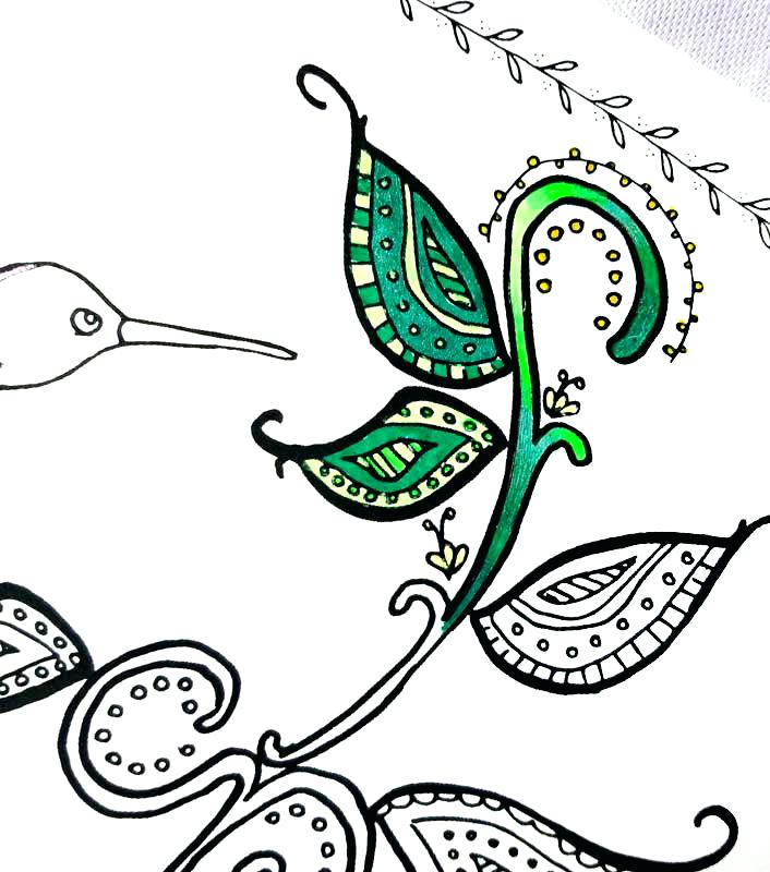 706x800 Hummingbird Coloring Pages Hummingbird Coloring Book Pages
