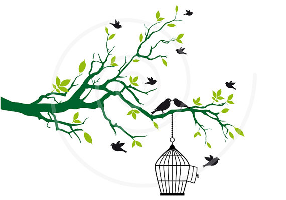 570x399 Free Birds With Open Birdcage On Tree Branch Green Leaves