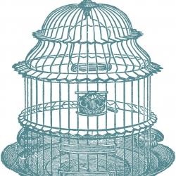 250x250 Salient Birdcage Vector Bird Cage Vintage Birdcage Stockvector