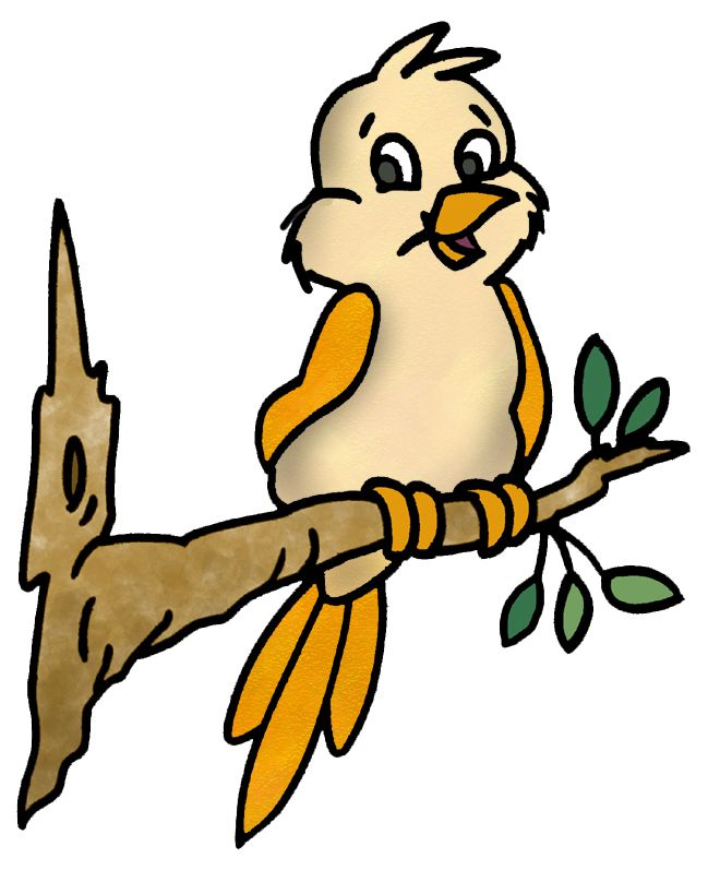 649x797 702 Best Birds Images On Birds, Little Birds And Draw
