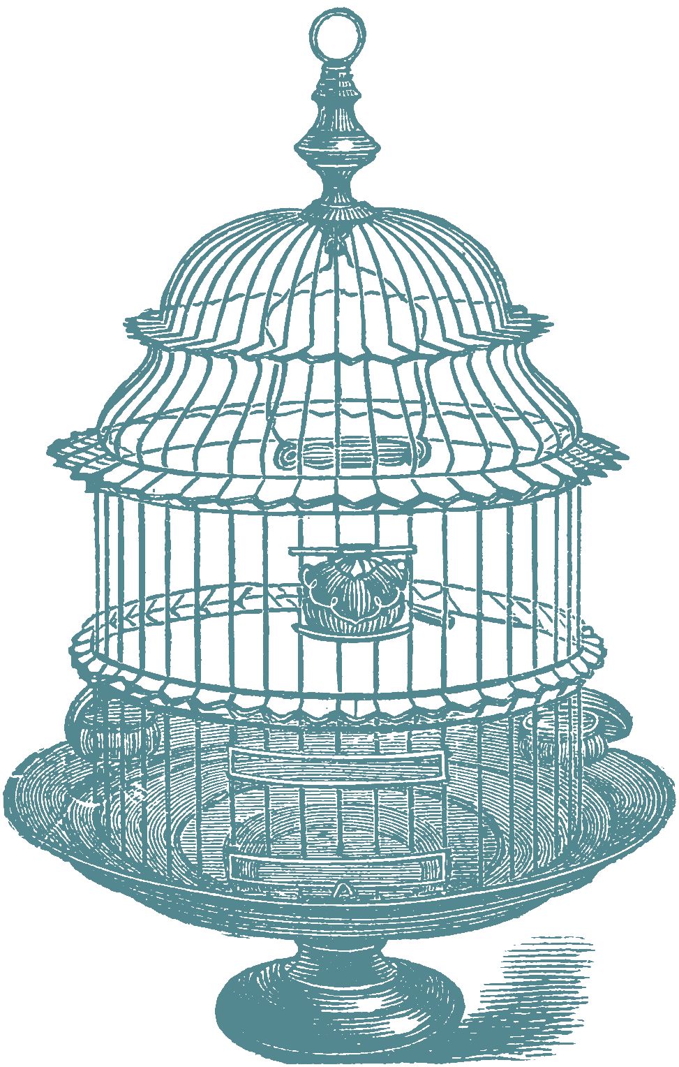 973x1528 Another Set Of Bird Cage Stock Images Oh So Nifty Vintage Graphics