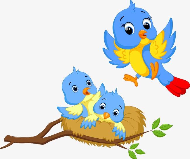 650x546 Birds Cartoon Group