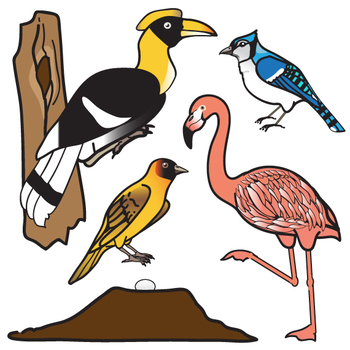 350x350 Birds And Their Nests Clip Art Set By The Painted Crow Tpt