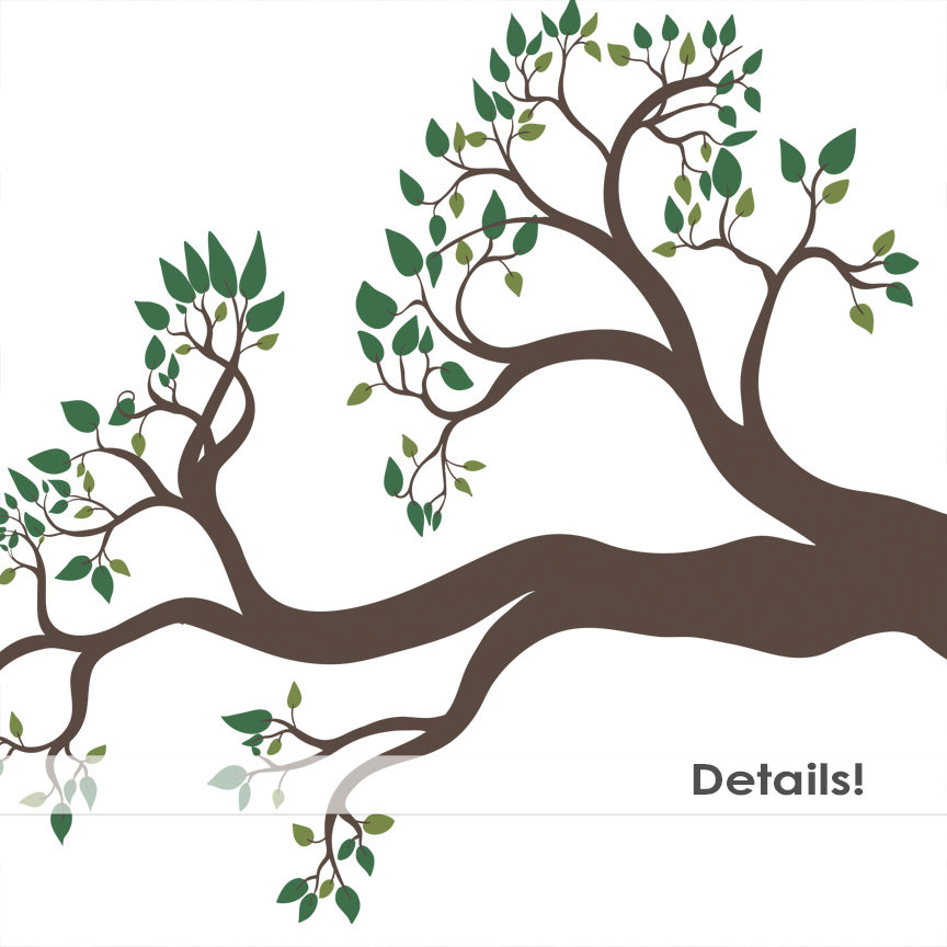 864x864 Tree Branch Clip Art, Bird Nest Amp Pine Cone, Tree Clipart, Tree