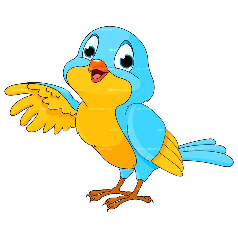 800x800 Free Pictures Of Birds In Addition To Bird Free Clip Art Parrots