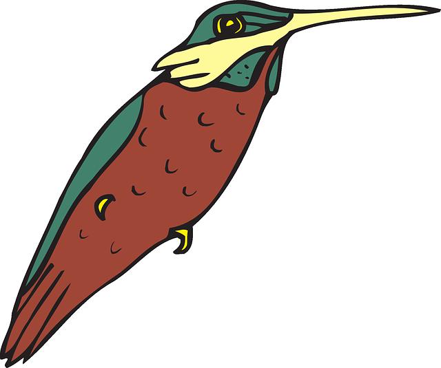 640x535 Bird, Wings, Art, Hummingbird, Beak, Feathers Clipart Idea