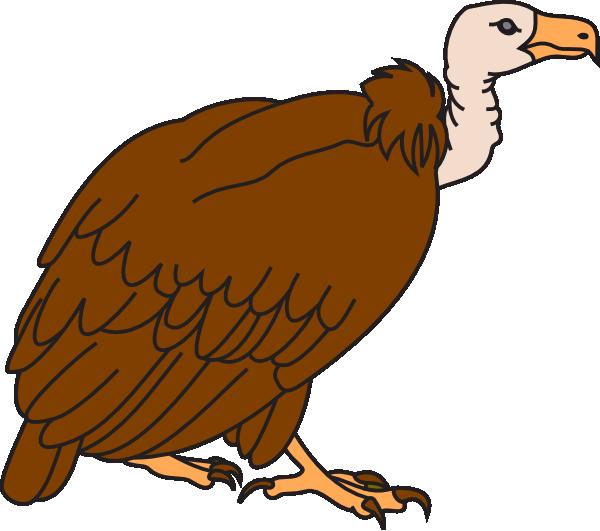 600x531 Clipart Of Vulture Big Brown Clip Art At Clker Com Vector Online