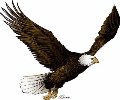 400x335 Bald Eagle Clip Art