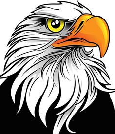 236x275 44 Images Of Eagle Mascot Clipart You Can Use These Free Cliparts