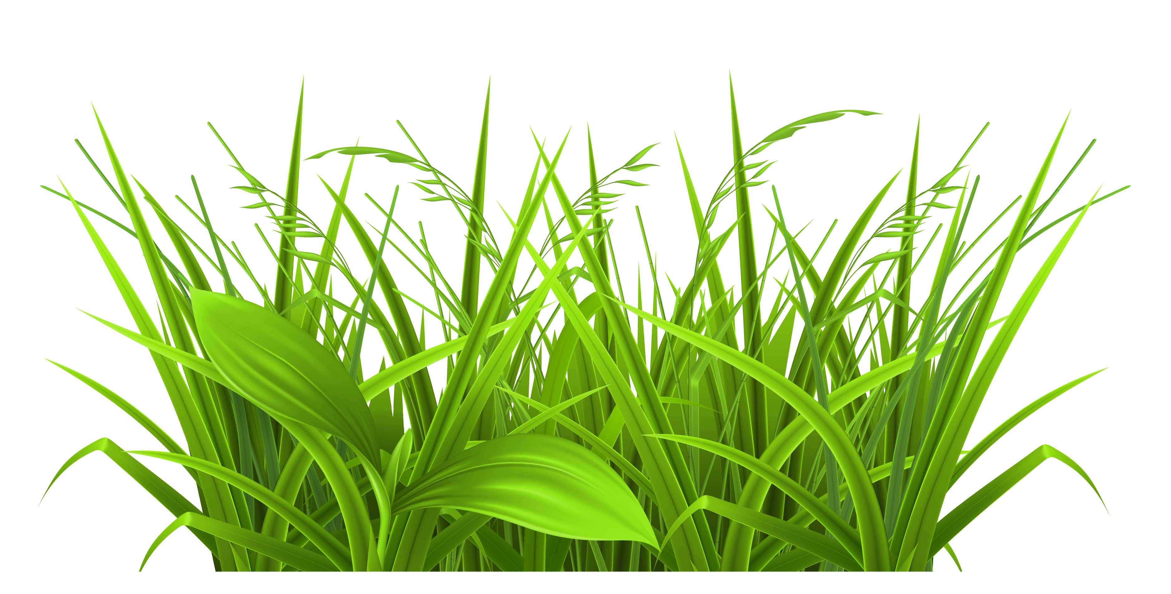 3758x1907 Grass Black And White Grass Clip Art Images