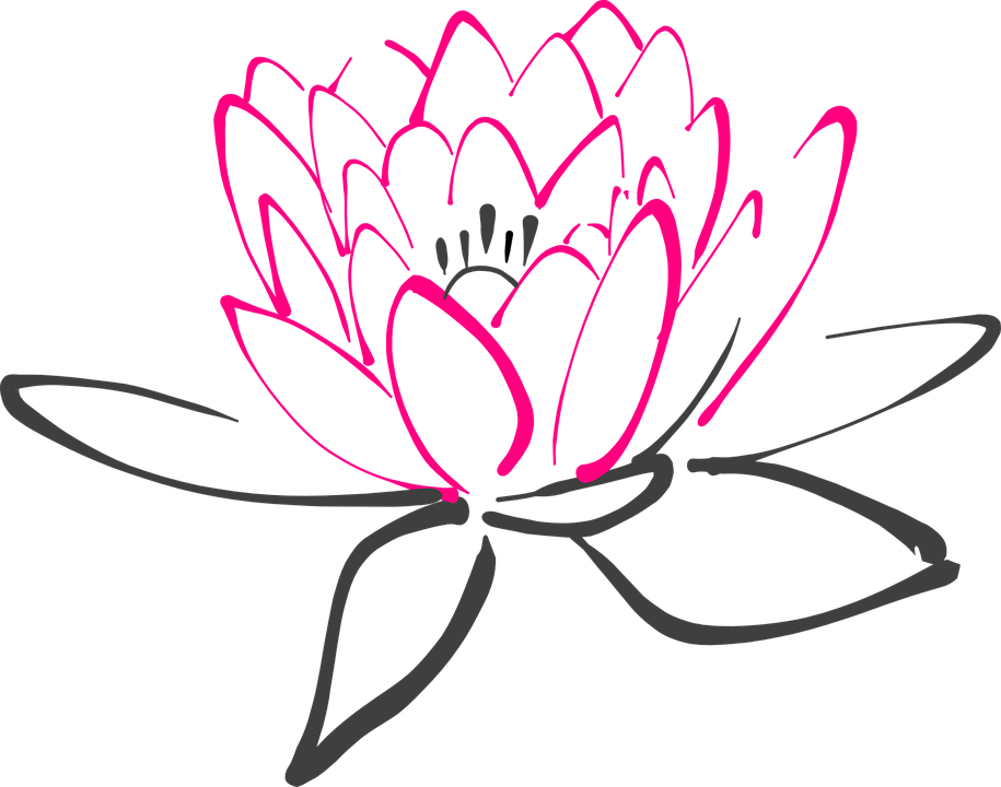 915x720 Water Lily Png Black White Transparent Water Lily Black