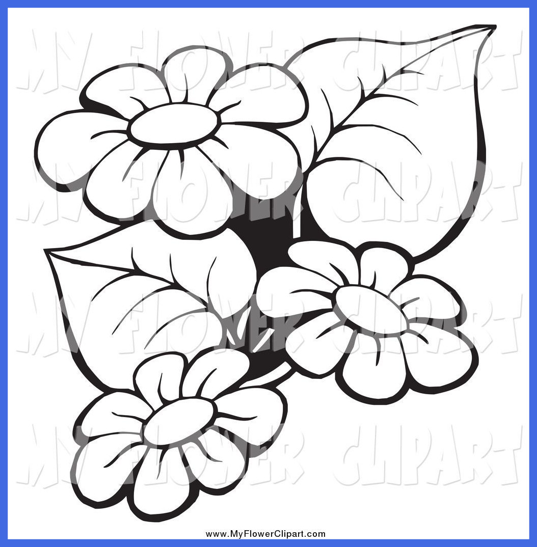 1054x1074 Amazing Flower Clip Art Black And White Outline B U Of Rose