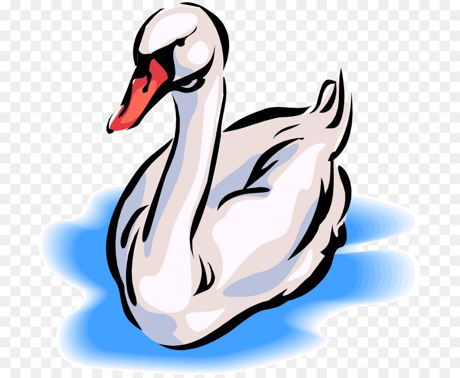 900x740 Black Swan Whooper Swan Free Content Clip Art