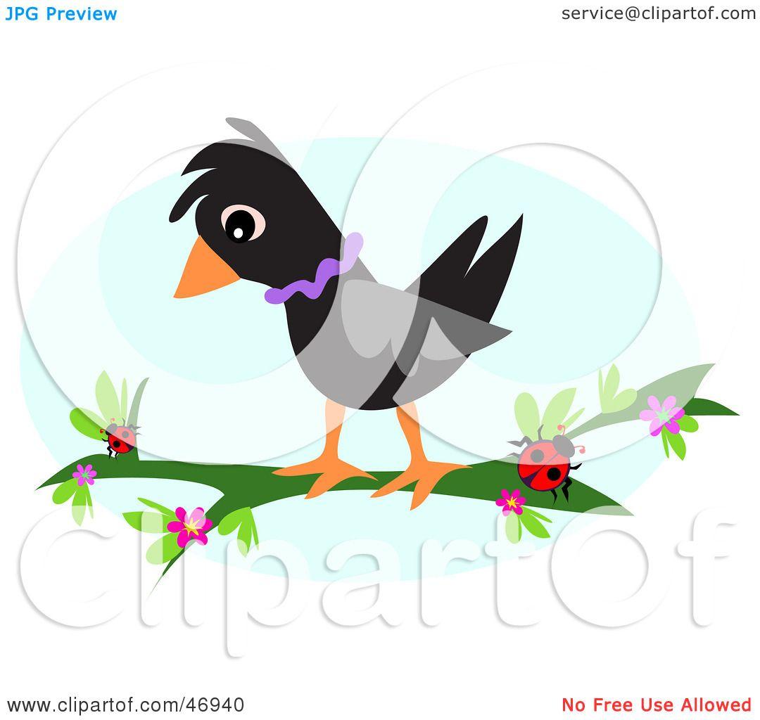 1080x1024 Royalty Free (Rf) Clipart Illustration Of Black Birdnd