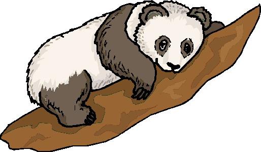 514x299 Panda Clip Art Gif