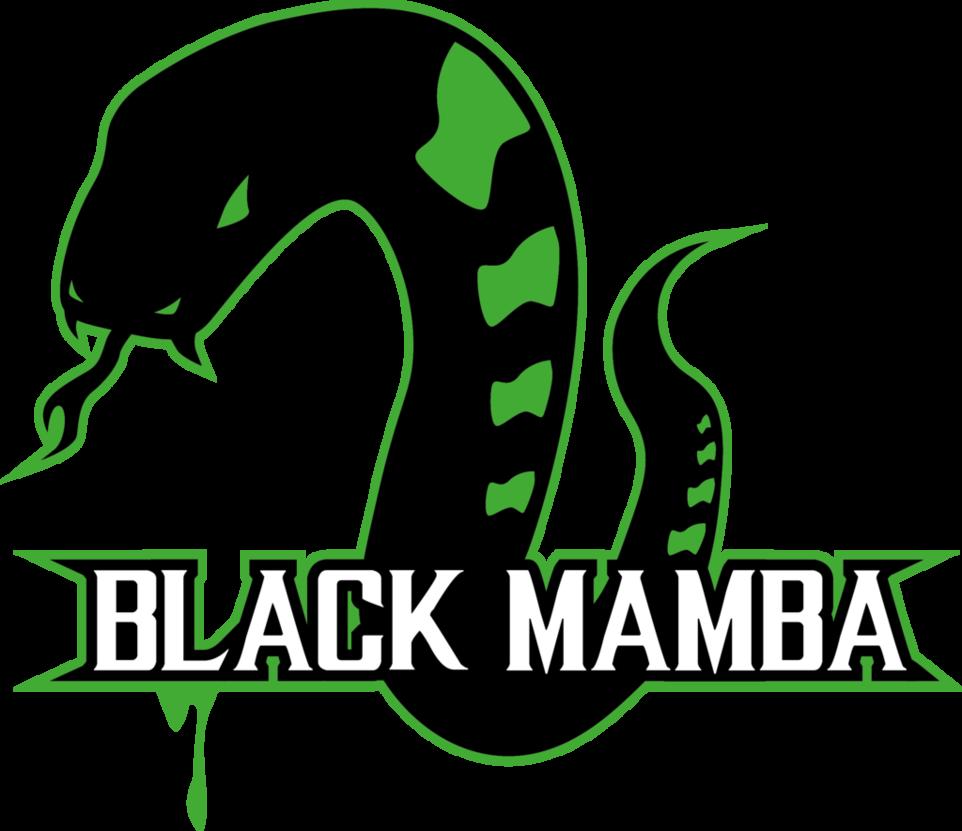 962x831 Black Mamba By Thenemetrix