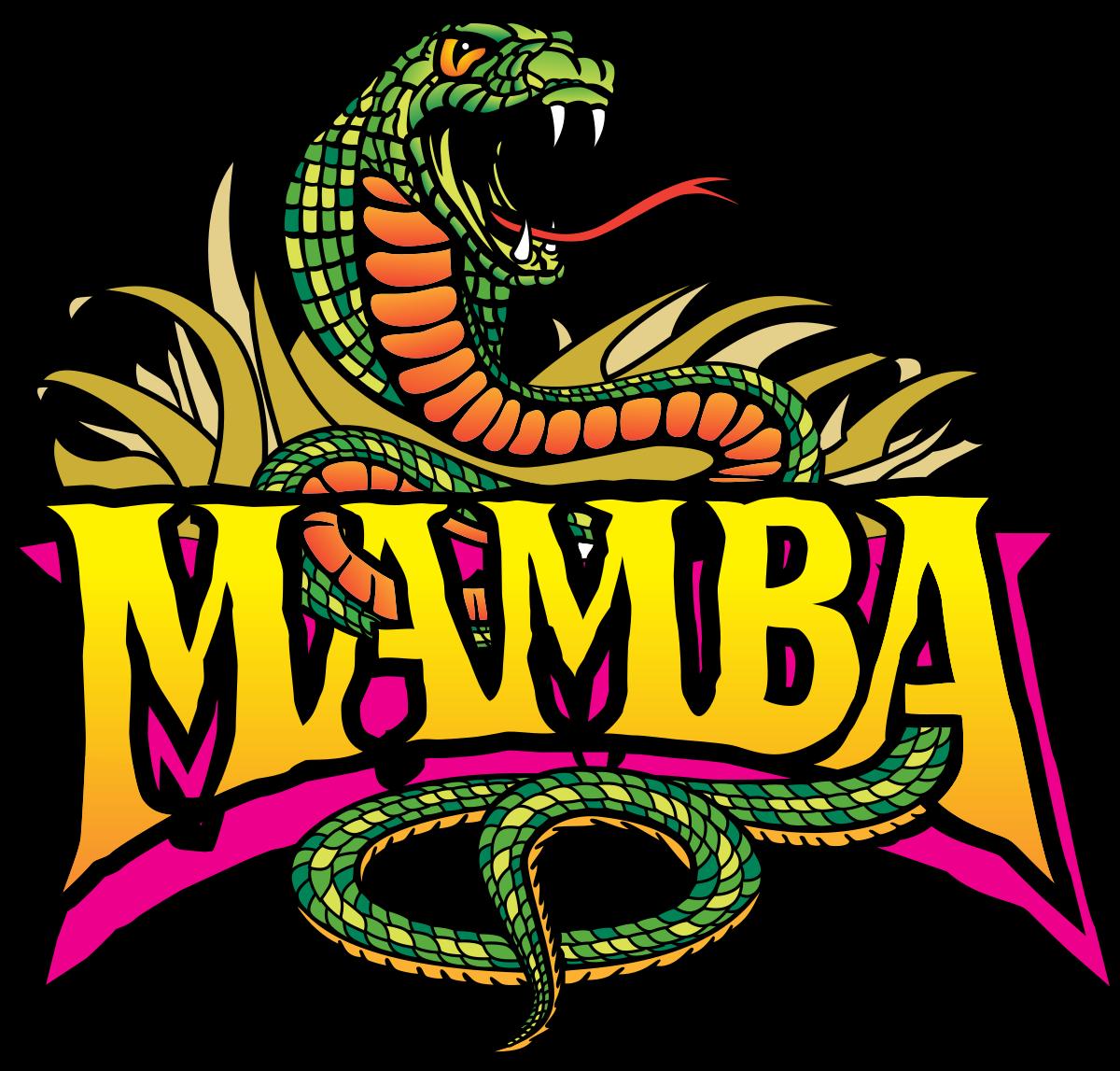 1200x1147 Mamba (Roller Coaster)