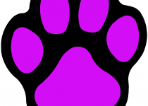210x150 Clip Art Panther Paw Clip Art