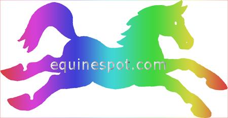450x232 Horse Clipart
