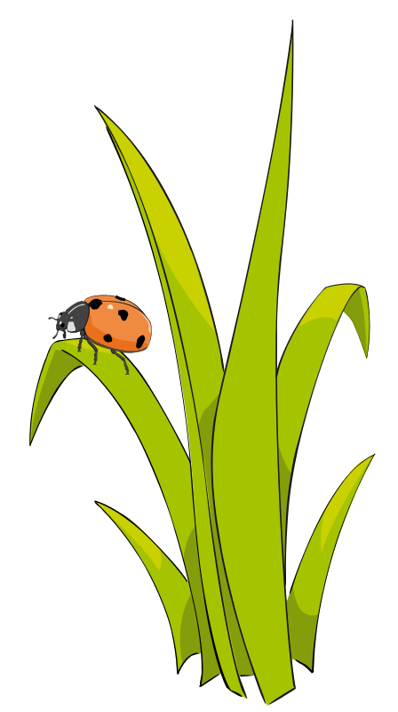 448x800 Grass And Flowers Clip Art Grass2 Ladybugs Galore