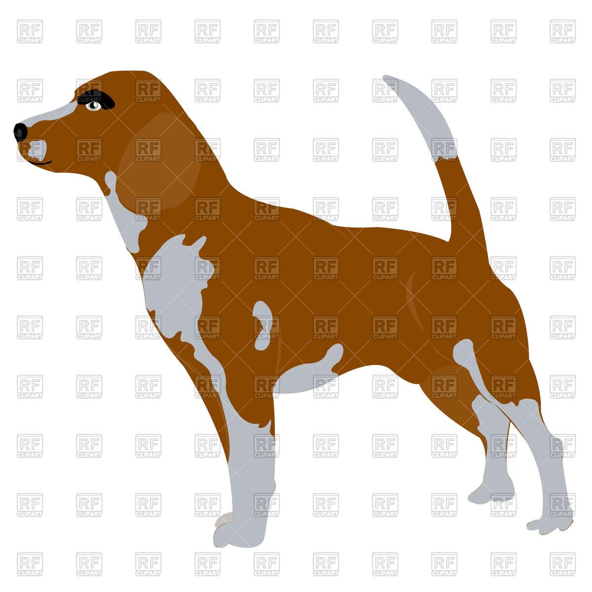1200x1200 Beagle Dog Royalty Free Vector Clip Art Image
