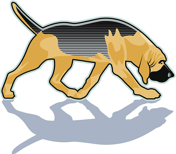 612x535 Bloodhound Clipart Image Group