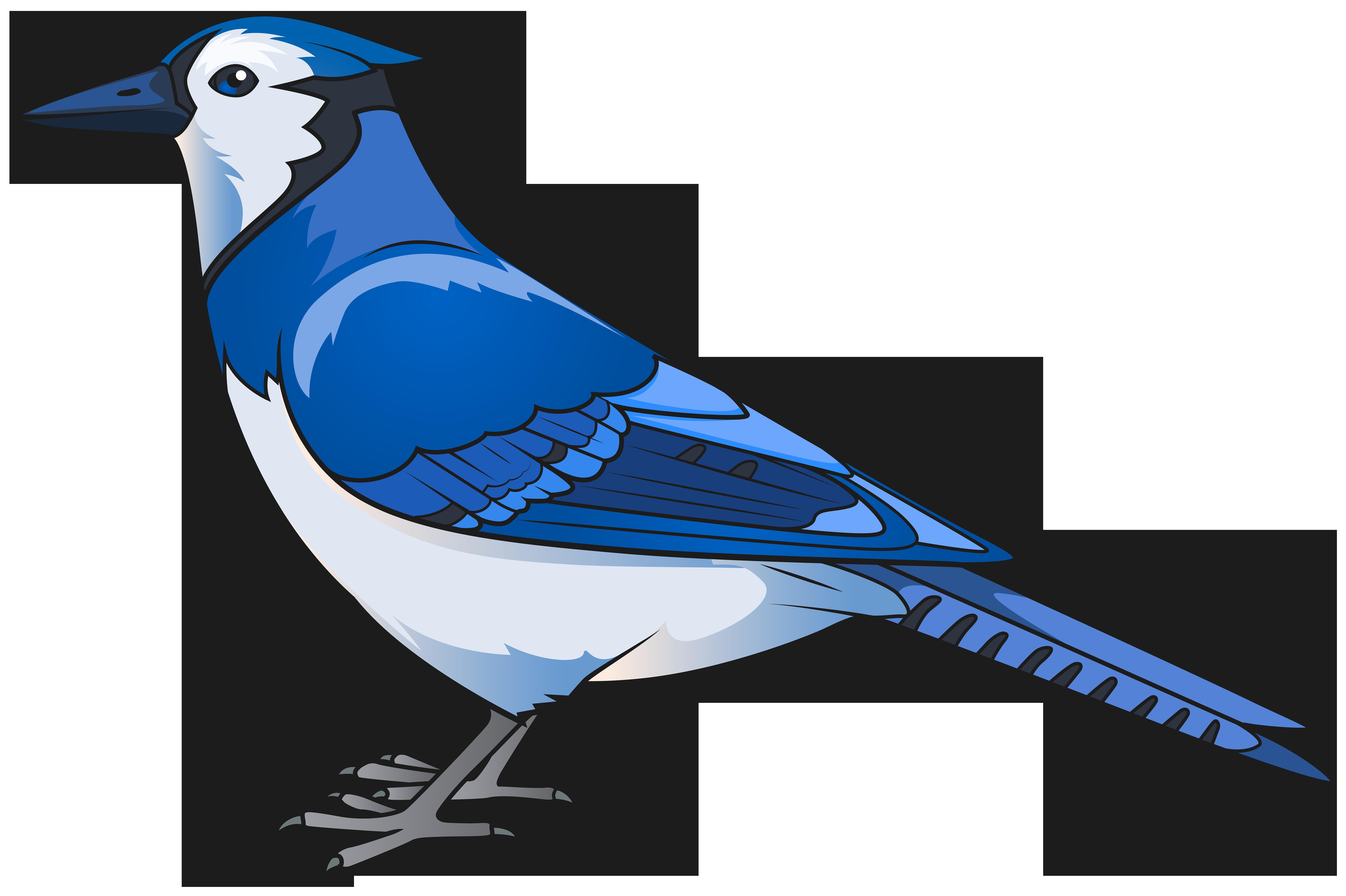8000x5325 Blue Bird Transparent Png Clip Art Imageu200b Gallery Yopriceville