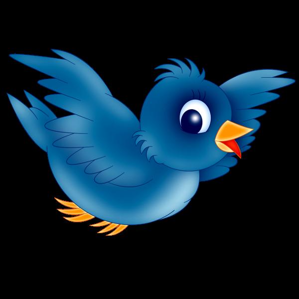 600x600 Blue Bird