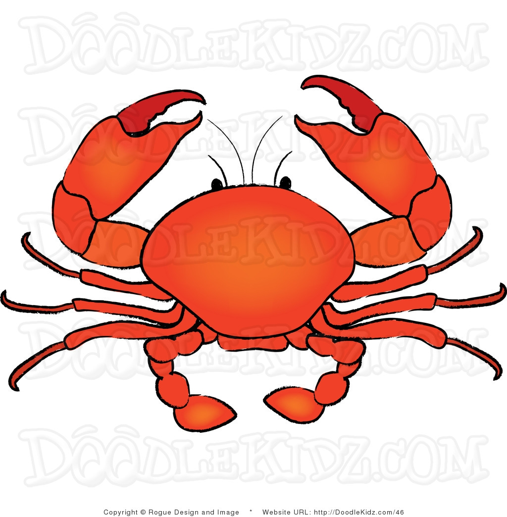 1024x1044 Best Of Crab Clipart Gallery