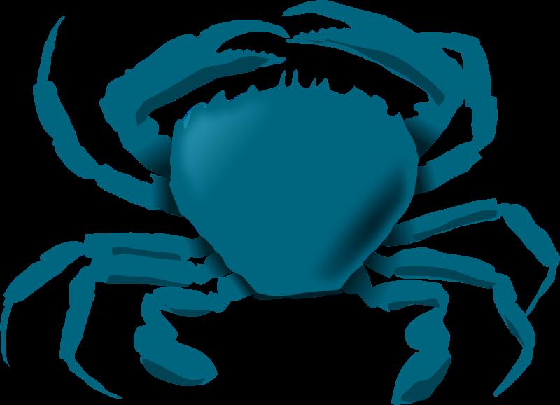 800x578 Free Clipart Blue Crab Annaleeblysse