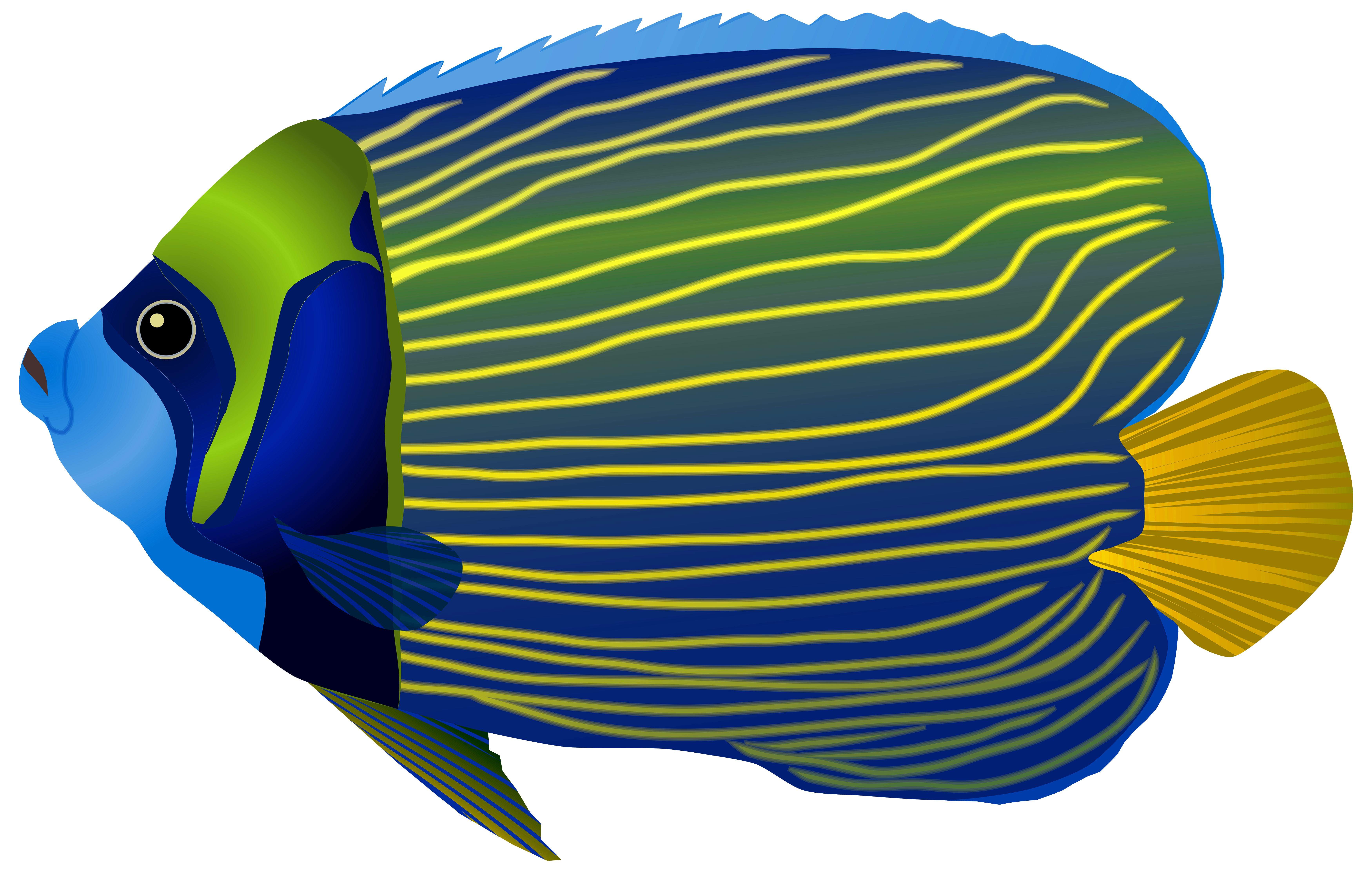 7000x4452 Blue Fish Png Clip Art Imageu200b Gallery Yopriceville