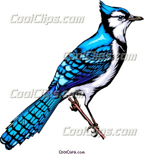 288x308 Bluebird Clip Art