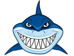 Blue Shark Clipart