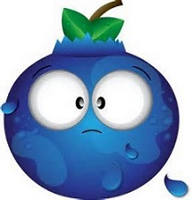 209x219 Free Blueberry Clipart