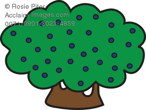 300x227 Shrub With Blueberries Royalty Free Clip Art Picture
