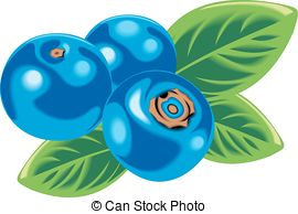 270x194 Blueberries Isolated Clip Art Vector Graphics. 3,586 Blueberries