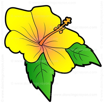 350x350 Flowers Us State Flowers Clip Art By Dancing Crayon Designs Tpt
