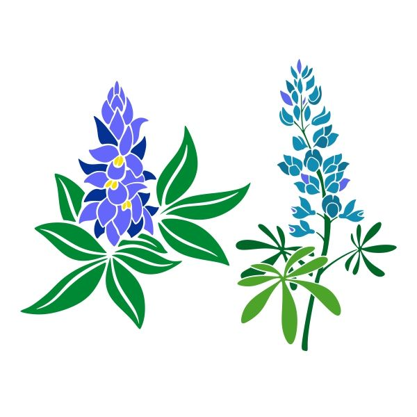 bluebonnet clipart at getdrawings com free for personal use rh getdrawings com bluebonnet flower clipart bluebonnet clipart png