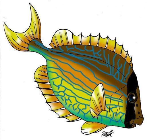 512x486 100 Best Vissen (Plaatjes) Images On Clip Art, Fishing