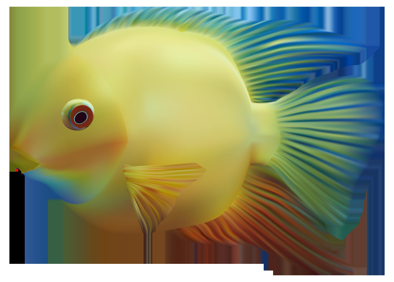 3060x2189 Tropical Fish Clipart Gills Clipart