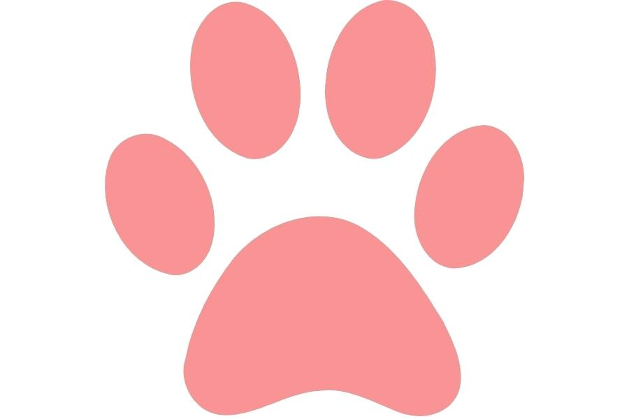 900x600 Print Clip Art Dog Paw Print Drawing Craft Sites For Kids Cat Paw