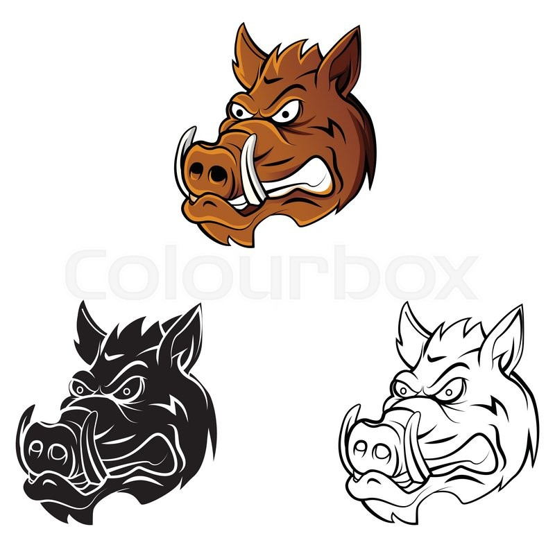 800x789 Coloring Book Wild Boar Head Cartoon Character Stock Vector