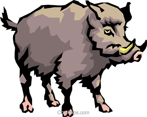 480x382 Wild Boar Royalty Free Vector Clip Art Illustration Anim0481