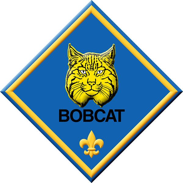 600x600 Cub Scout Clipart